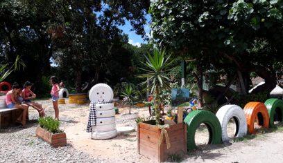 Projeto transforma espaços públicos em jardins ecológicos