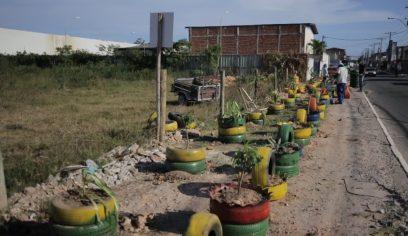Prefeitura transforma área no bairro Nova Vitória em jardim ecológico