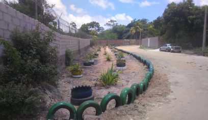 Prefeitura transforma lixão em jardim no bairro Verdes Horizontes
