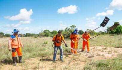 Agentes da Defesa Civil participam de treinamento de combate a incêndio