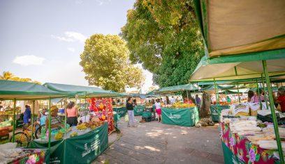 Sedap implanta processo de identificação QR Code nas feiras livres do município