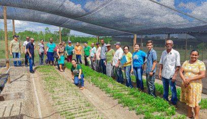 Produtores passam por nova oficina para receber certificação de produção orgânica