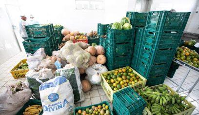 Prefeitura já comprou mais de 100 toneladas de alimentos através do PAA