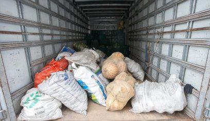 Sedap realiza compra de cerca de duas toneladas de alimentos pelo PAA