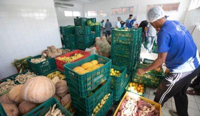 Cerca 200 toneladas de produtos da agricultura familiar foram adquiridos pela prefeitura