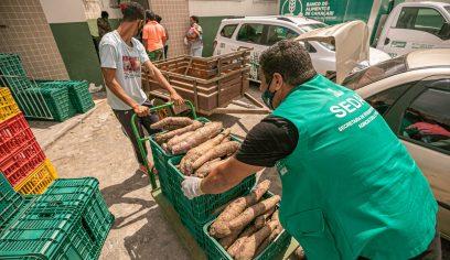 Prefeitura compra cerca de 6.500 quilos de produtos agrícolas
