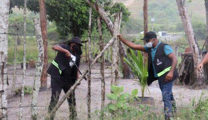 Sedur realiza ação de desocupação em área de preservação ambiental