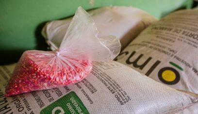 Sedap avança na segunda etapa de entrega de insumos a agricultores rurais