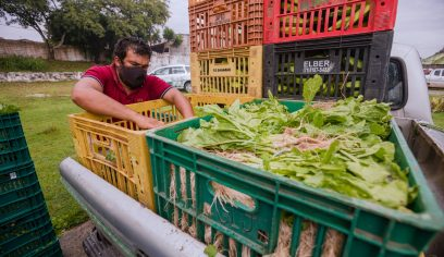 Por meio do PAA, Sedap realiza compras de produtos agrícolas