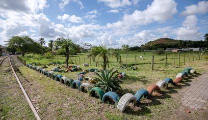 Limpec entrega jardins sustentáveis na sede e orla do município